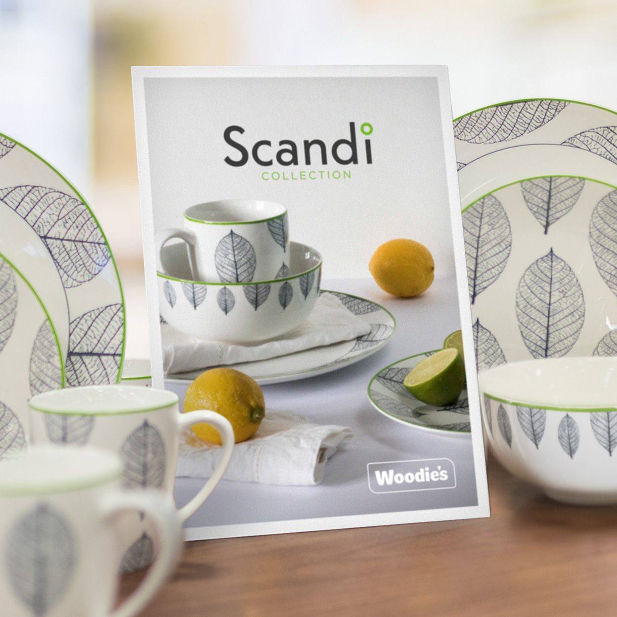 Principle brand agency Dublin Woodie's homewares brand design project scandi collection Delph range